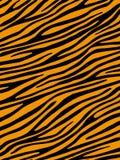 Fond de tigre Images stock