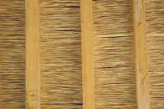 Fond de toit couvert de chaume Photographie stock