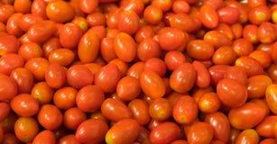 Fond de tomate de raisin rouge, deux chemins de coupure inclus image libre de droits