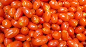 Fond de tomates de raisin rouge Image stock