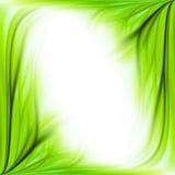 Fond de trame d'herbe verte Photo stock