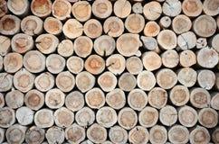 Fond de tronçons d'arbre Image libre de droits