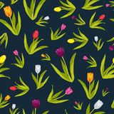 Fond de Tulip Flowers Wallpaper Seamless Pattern Photographie stock