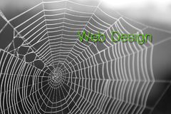 Fond de typographie de lettrage de conception graphique de toile d'araignée Photographie stock