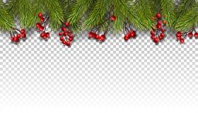 Fond de vacances avec des branches de sapin et des baies rouges illustration libre de droits
