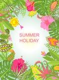 Fond de vacances d'été avec les fleurs exotiques Image stock