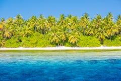 Fond de vacances et de vacances d'été Plage et palmiers, utilisation pour la bannière ou conception de l'avant-projet images stock