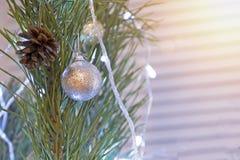 Fond de vacances Plan rapproché d'arbre de Noël décoré de la boule blanche et du vrai cône Photo libre de droits