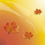 Fond de vecteur avec le texte d'Autumn Leaves And Space For Photo libre de droits