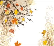 Fond de vecteur d'automne Photographie stock libre de droits