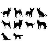 Fond de vecteur du chien silhouette Image libre de droits