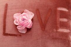 Fond de Velor avec la fleur Photos stock