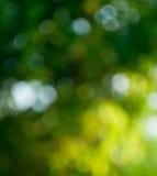 Fond de vert jaune Image libre de droits