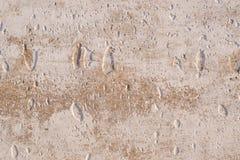 Fond de vieux mur en béton superficiel par les agents avec criqué Photographie stock libre de droits