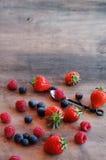 Fond de vintage avec des fruits de ressort Photos libres de droits
