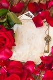 Fond de vintage avec des pétales de rose photos stock