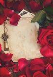 Fond de vintage avec des pétales de rose images stock