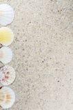 Fond de voyage avec le sable et les coquilles Image libre de droits