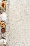 Fond de voyage avec le sable et les coquilles Image stock