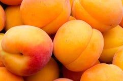 Fond des abricots Photos libres de droits