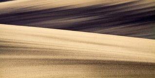 Fond des champs de Moravian Photo libre de droits