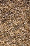 Fond des copeaux en bois. Essences de biomasse. Images libres de droits