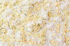 Fond des fleurs Image libre de droits