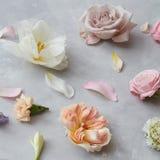 Fond des fleurs et des pétales Photo libre de droits