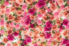 Fond des fleurs roses multicolores artificielles Photo stock