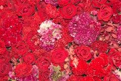 Fond des fleurs rouges Photo stock