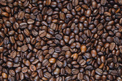 Fond des graines de café Images libres de droits