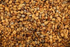 Fond des haricots de luwak de café Photo stock