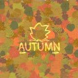 Fond des lames d'automne Photos libres de droits