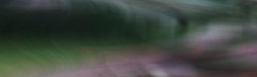 Fond des lignes onduleuses verticales du résumé en pastel images stock