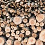 Fond des logarithmes naturels coupés secs de bois de chauffage Images libres de droits