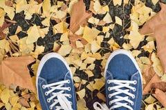 Fond des paires bleues de chaussure de toile avec les feuilles d'automne tombées Photographie stock