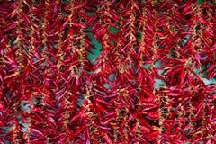 Fond des paprikas rouges et verts colorés au-dessus du Ba en bois Photo libre de droits
