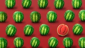 Fond des pastèques fraîches illustration stock