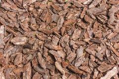 Fond des pierres et de l'écorce Photo libre de droits