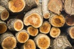 Fond des rondins coupés secs de bois de chauffage empilés sur l'un l'autre dans une pile Photo stock