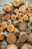 Fond des rondins coupés secs de bois de chauffage empilés sur l'un l'autre dans une pile Photos stock