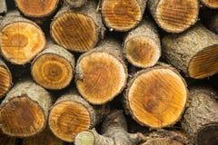 Fond des rondins coupés secs de bois de chauffage empilés sur l'un l'autre dans une pile Photo libre de droits