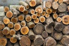 Fond des rondins coupés secs de bois de chauffage empilés sur l'un l'autre dans une pile Photographie stock