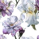 Fond des roses et de l'iris Configuration sans joint Photo stock