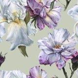 Fond des roses et de l'iris Configuration sans joint Photographie stock