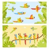 Fond deux coloré avec des perroquets de vol et séance sur le branc Images libres de droits
