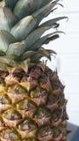 Fond diurétique de fruit de Pinneaple Healty photos libres de droits
