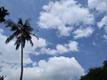 Fond du ciel bleu nuageux blanc photographie stock libre de droits