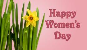 Fond du jour des femmes heureuses avec des jonquilles Images libres de droits