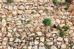 Fond du mur en pierre avec l'herbe Image stock